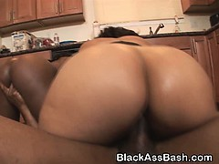 Black Chicks With Great Big...